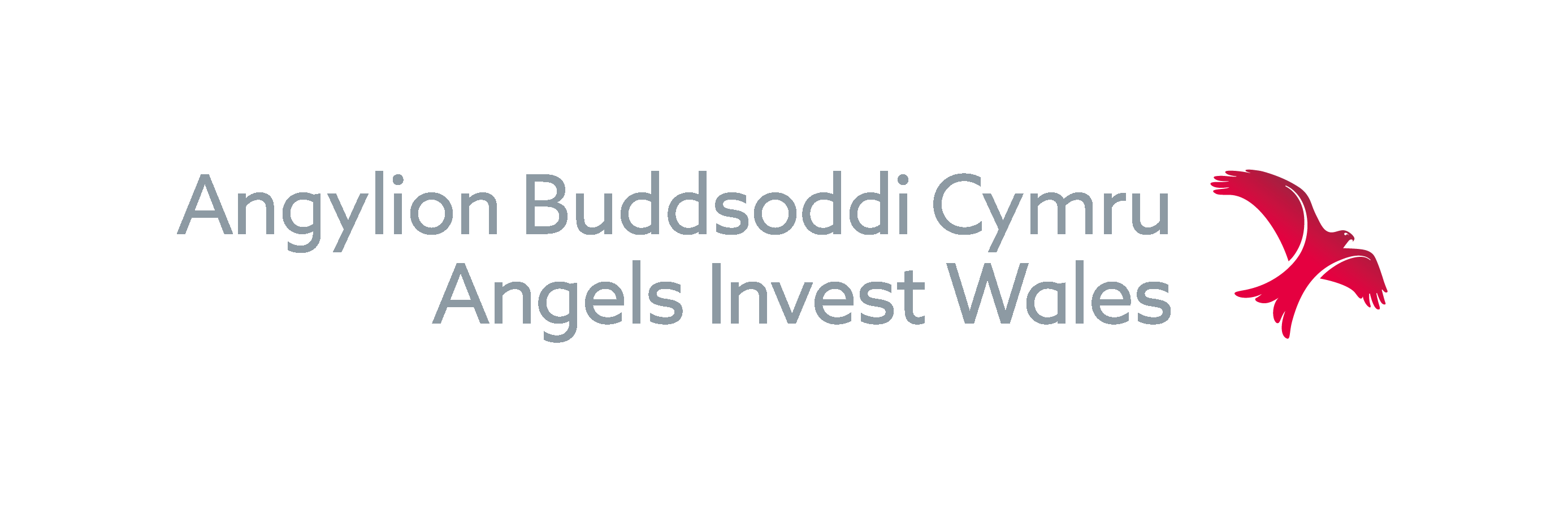 Angels Invest Wales logo